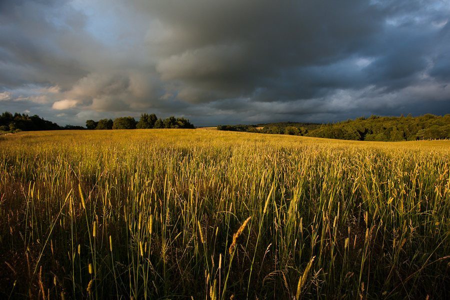 paysage-orage_mg_9604